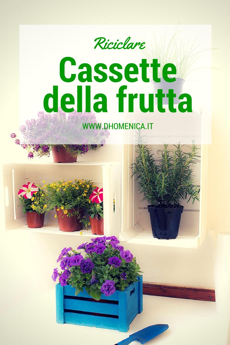 Riciclare cassette della frutta per un angolo di verde il blog di - Riciclare tutto in casa ...